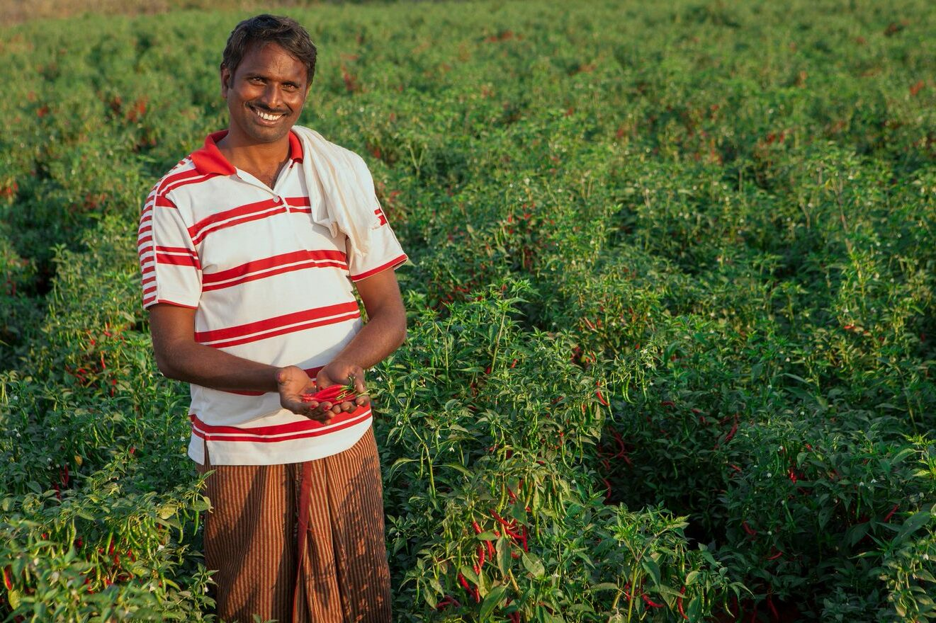 Indian man in field