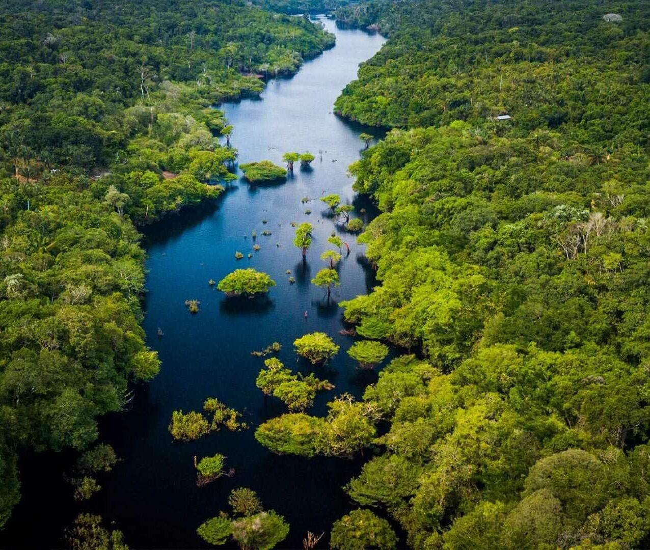 Climate & Biodiversity