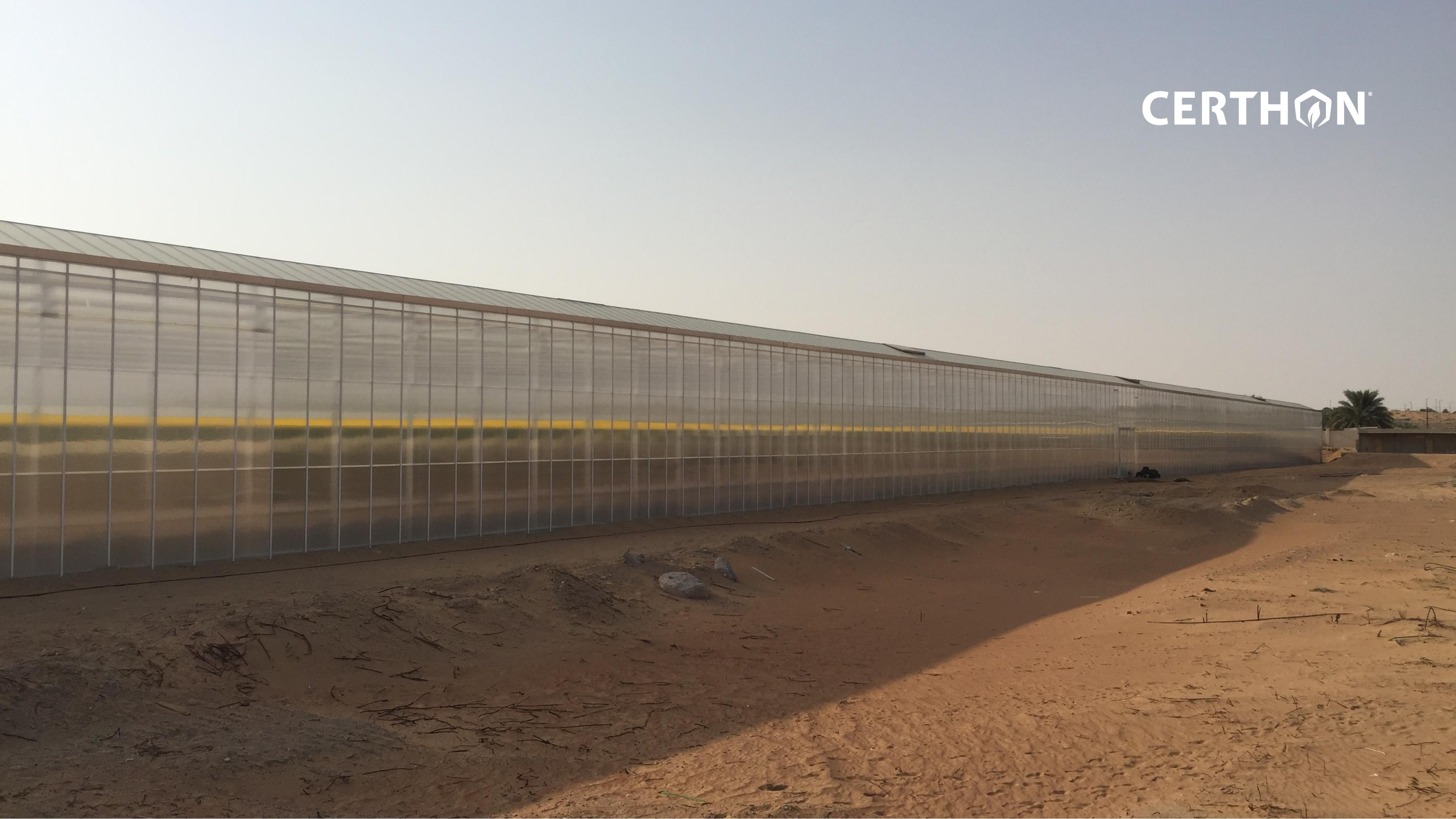 Desert pure harvest