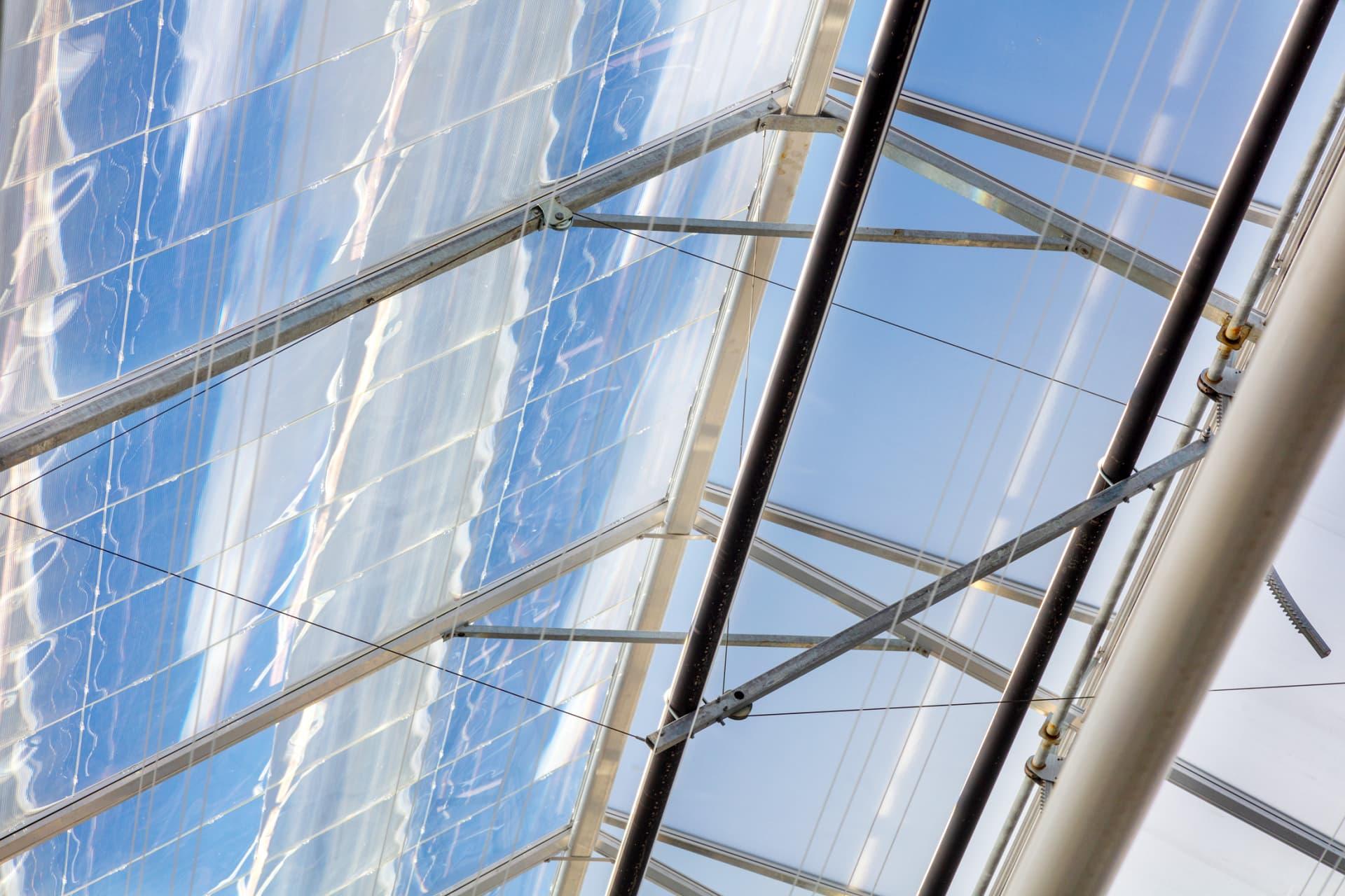Daylight greenhouse